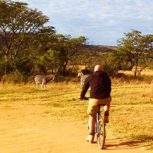 fietsen tussen wilde dieren