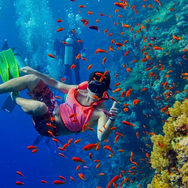 snorkelen in zanzibar