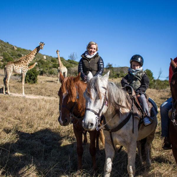 familie-vakanties-safari-te-paard